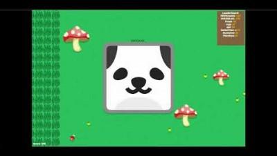ANOMAL.IO O PANDA GIGANTE.