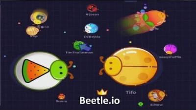 Beetle.io Big Beetle (New .io Game)