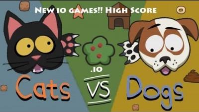 Cat vs Dog New io games!! High Score