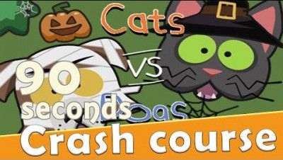 CatsVsDogs.io in 90 seconds! ( Tip & Tricks included ) | #Random.io Crash Course 37 | CatsVsDogsio