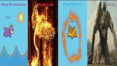 Flyordie.io Birds in Real Life - All New Evolutions