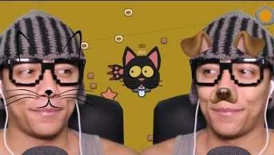 GATOS VS CACHORROS - Catsvsdogs.io