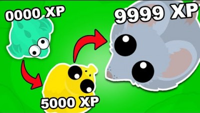 How I EVOLVED into a SMALL PRO in MOPE.IO