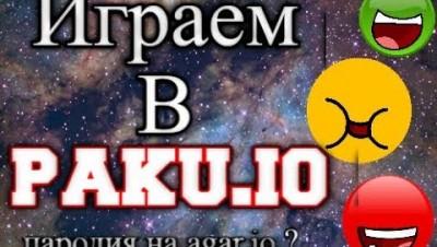 Играем в Paku.io. Пародия на агарио?
