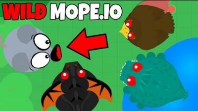 JOGANDO O MODO WILD - Mope.io
