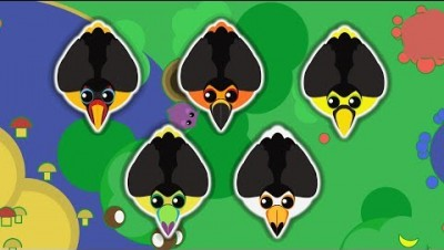 MOPE.IO // DIL DIL TOUCAN JAN JAN TOUCAN // 5 SPECIES OF TOUCAN // MOPE BETA // Teaser #25