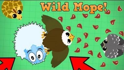 Mope.io Eagle Carries Ice Monster!! New Wild Mope GameMode On Beta! (Mope.io Beta Update)