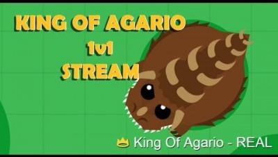 MOPE.IO // #KingOfAgarioVsNation // LETS 1V1