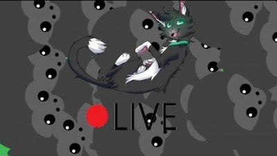 Mope.io LIVESTREAM // LET'S MAKE AN ARMY // Tag-≽ᑕØ≼ // USA 1 East // Cat Origins