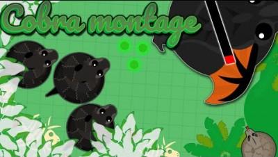 Mope.io New best way to get apex kills! (1m) | Cobra kill montage!