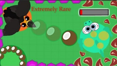 Mope.io // RARE LAVA TOUCAN KILL DRAGON // Mope.io Beta update // Kills compilation