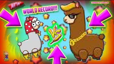 NEW IO GAME: LLAMA.IO / LLAM.IO [WORLD RECORD GAMEPLAY] WORLD'S BIGGEST LLAMA ON THE SERVER - TIPS!!
