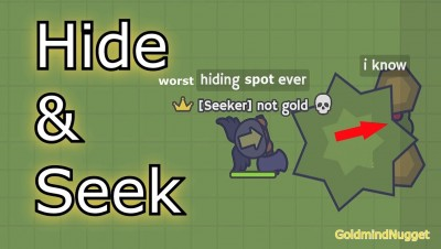 Play HIDE AND SEEK in MooMoo.io | gameplay