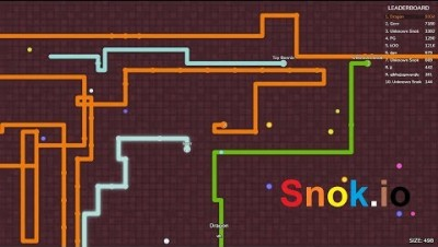 Snok.io World Record (Snake.io)