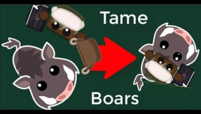 Starve.io - New Boars And Saddle Update - Train your Boars