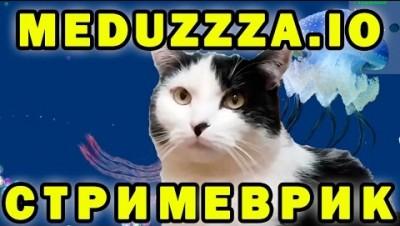 Улитки радуются в meduzzza.io