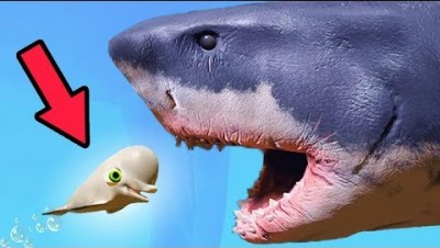WORLD'S CUTEST BELUGA vs NEW GREAT WHITE SHARK! (BIGGEST SHARK EVER) (Feed and Grow Fish gameplay)